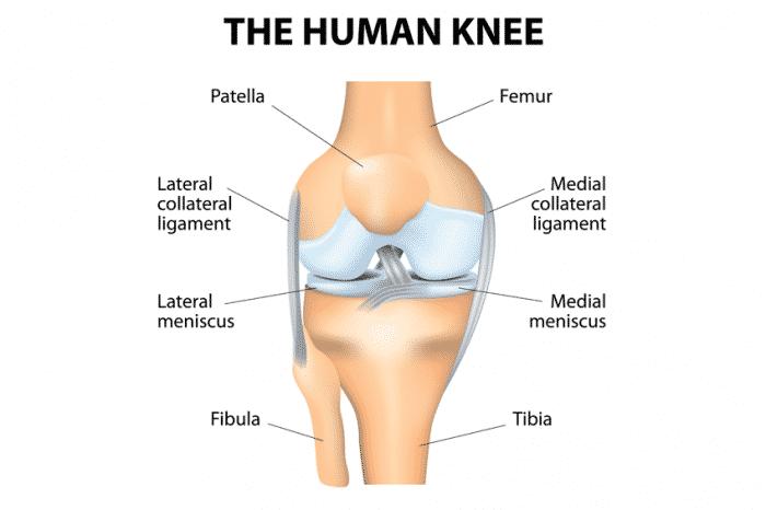 Μύθοι και αλήθειες για την αρθροπλαστική γόνατος